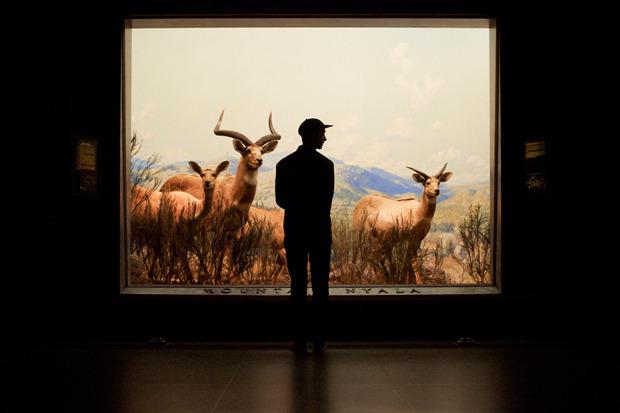 Марка Huf сняла второй осенний лукбук в Американском музее естественной истории. Изображение № 2.