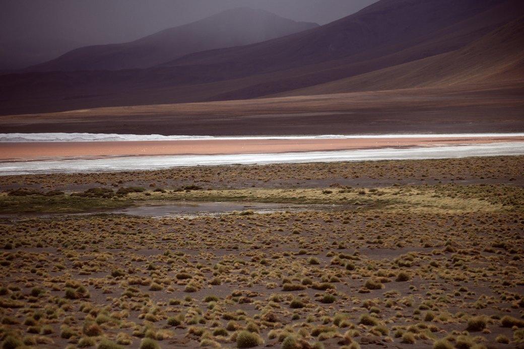 Буря в пустыне: Фоторепортаж с ралли «Дакар-2014» . Изображение № 3.