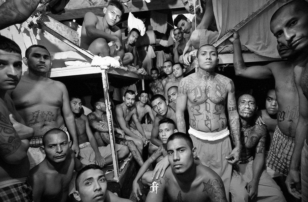 Наркокорридо: Музыка, фильмы, религия и обычаи мексиканских гангстеров. Изображение № 11.