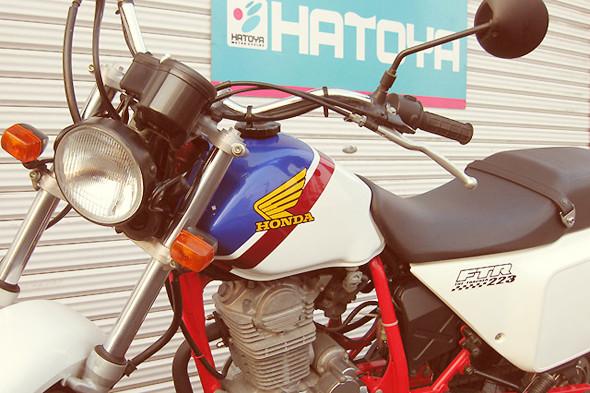 Первый мотоцикл Марка Элей — Honda FTR 223. Изображение № 6.