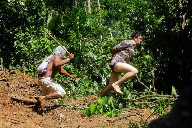 Индейцы Амазонии открыли охоту на браконьеров. Изображение № 1.