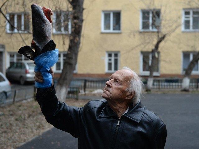 101-летний житель Сибири превратил замороженную рыбу в муляж олимпийского факела. Изображение № 1.