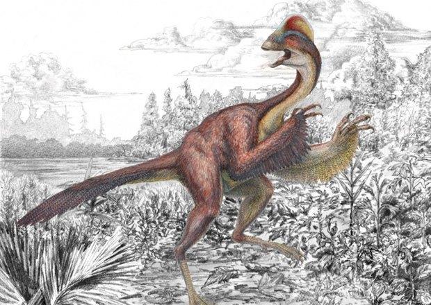 Американского подростка арестовали за убийство динозавра. Изображение № 1.