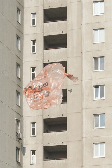 Дима Толкачёв: Диалог природы и человека в урбанистической среде. Изображение № 28.