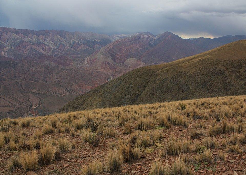 «Дорога лучше знает, где и когда ты должен быть»: Как я пересёк Латинскую Америку на велосипеде. Изображение № 40.