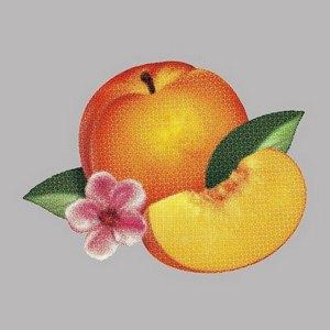 Группа Phoenix выпустила первую песню с нового альбома. Изображение № 1.