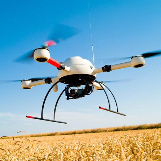 В Великобритании с помощью дронов научились воровать коноплю. Изображение № 1.