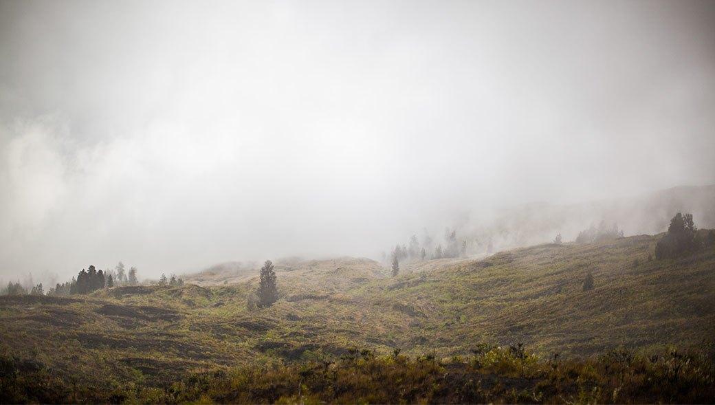 Тамбора, великий и ужасный: Как мы спустились на парапланах в кратер действующего вулкана. Изображение № 7.