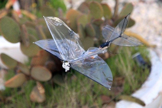 В Израиле создают беспилотник-бабочку. Изображение № 1.