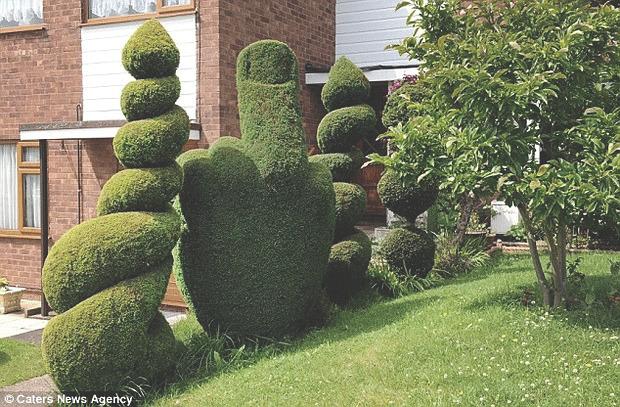Английская полиция попросила убрать неприличный куст в виде среднего пальца. Изображение № 1.