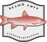 Изображение 8. Рыбацкие байки: рецепты от матерых рыболовов.. Изображение №51.