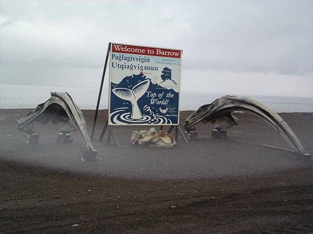 Вершина мира: Как я провел 26 дней на Аляске. Изображение № 11.