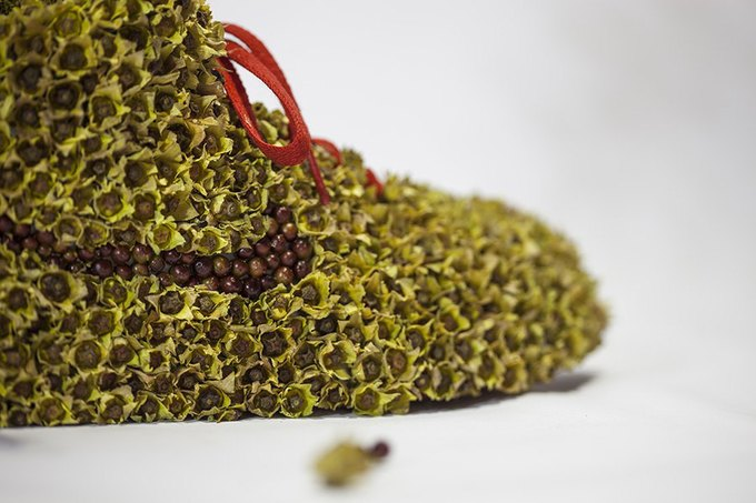 «Just Grow It!»: Известные модели кроссовок Nike из растений и цветов. Изображение № 5.