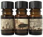 10 необычных парфюмерных ароматов . Изображение № 2.