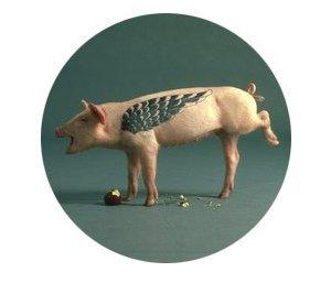 Всё о татуировках на свиньях. Изображение № 2.