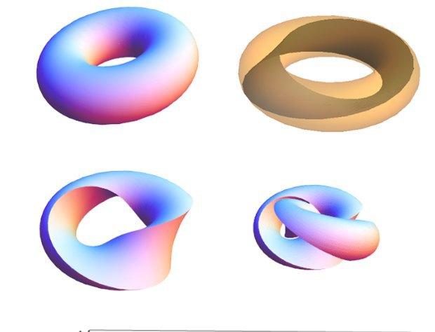Математики объяснили способ идеального разрезания бублика. Изображение № 4.
