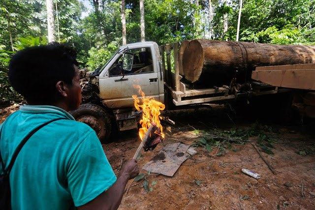 Индейцы Амазонии открыли охоту на браконьеров. Изображение № 5.