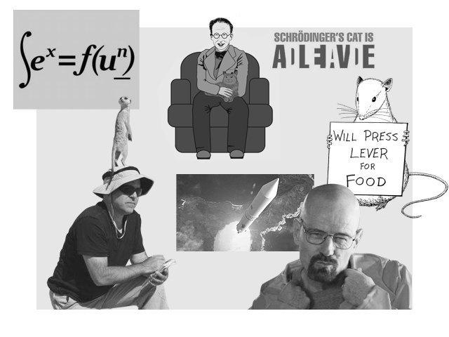 Физики шутят: 5 примеров сатирических медиа о науке. Изображение № 1.