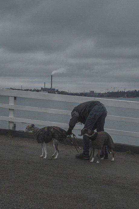 Дима Толкачёв: Диалог природы и человека в урбанистической среде. Изображение № 13.