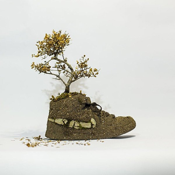 «Just Grow It!»: Известные модели кроссовок Nike из растений и цветов. Изображение № 10.
