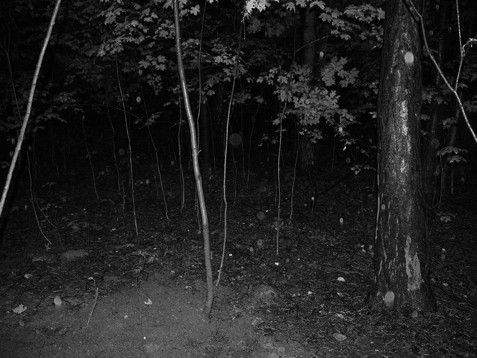 Финал эксперимента: Редакция FURFUR выкопала хэритейдж-лук. Изображение №39.