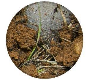 Ревизия: Непромокаемые ботинки в московской грязи. Изображение № 3.