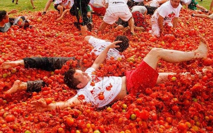 Голландцы забросали друг друга помидорами, протестуя против санкций. Изображение № 1.