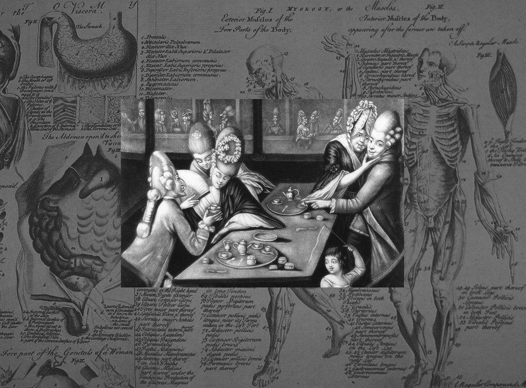 Неизвестный секс: Журналист Мэри Роуч разбирает историю импотенции с научной точки зрения. Изображение № 1.
