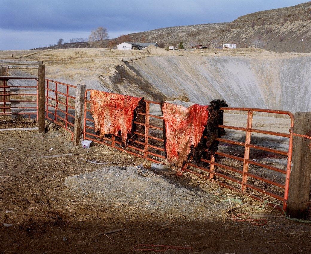 Бытовая жизнь работников бизоньего ранчо в США . Изображение № 25.