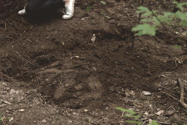 Начало эксперимента: Редакция FURFUR посадила хэритейдж-лук. Изображение № 28.