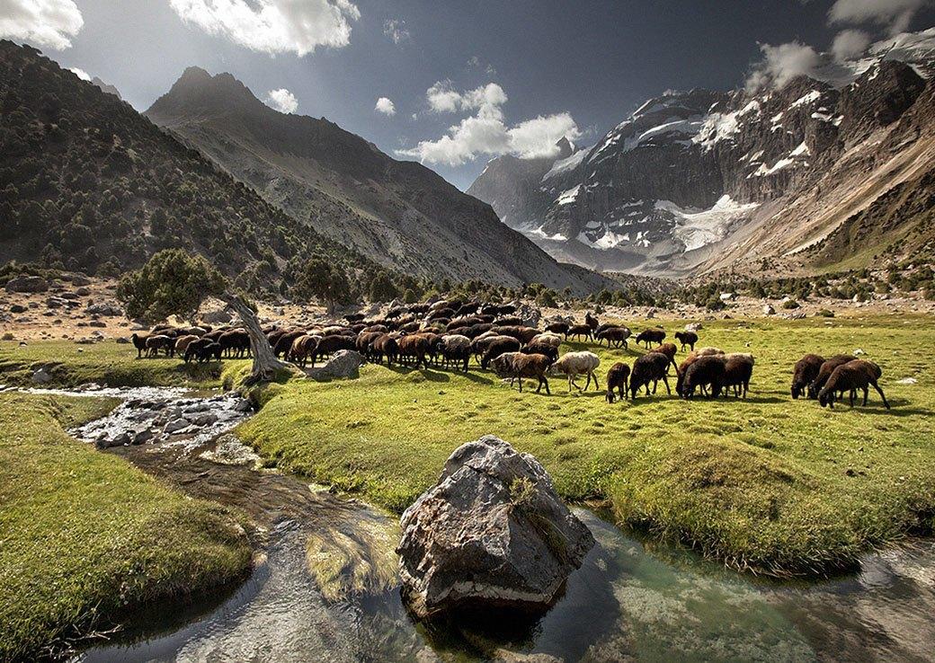 Встреча с личным богом: Фоторепортаж из похода в горы Таджикистана. Изображение № 3.