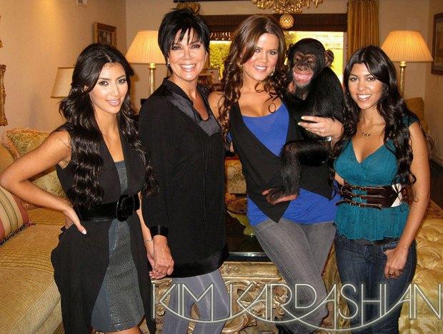 10 обезьян, ставших медийными персонами. Изображение № 4.