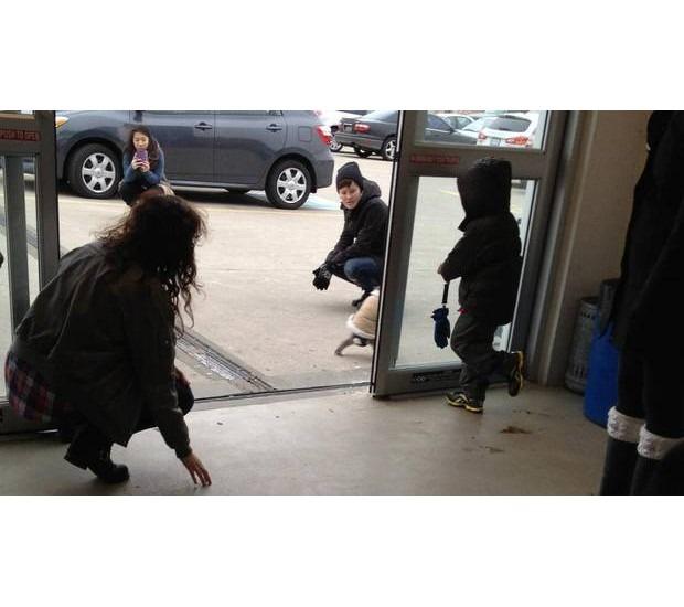 В Канаде обезьяна в пальто зашла в магазин IKEA. Изображение №3.