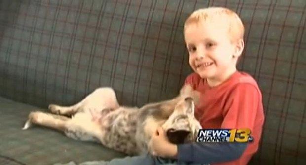 В США 6-летнего мальчика обвинили в сексуальном домогательстве. Изображение № 1.