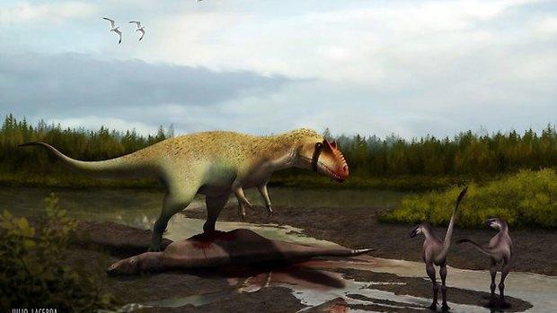 Ученые нашли динозавра, охотившегося на тираннозавров. Изображение № 1.