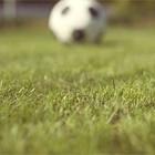 Special Issue: Футбольный журнал The Green Soccer Journal. Изображение № 5.
