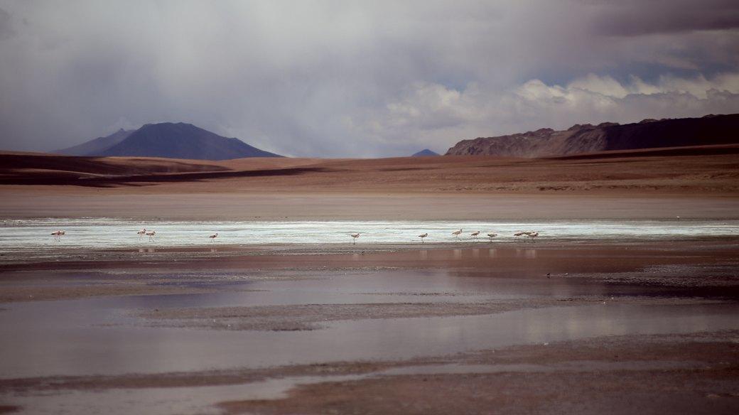 Буря в пустыне: Фоторепортаж с ралли «Дакар-2014» . Изображение № 48.