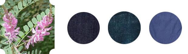 Оттенки синего: Все об индиго и вайде —двух известных благородных красителях. Изображение № 2.