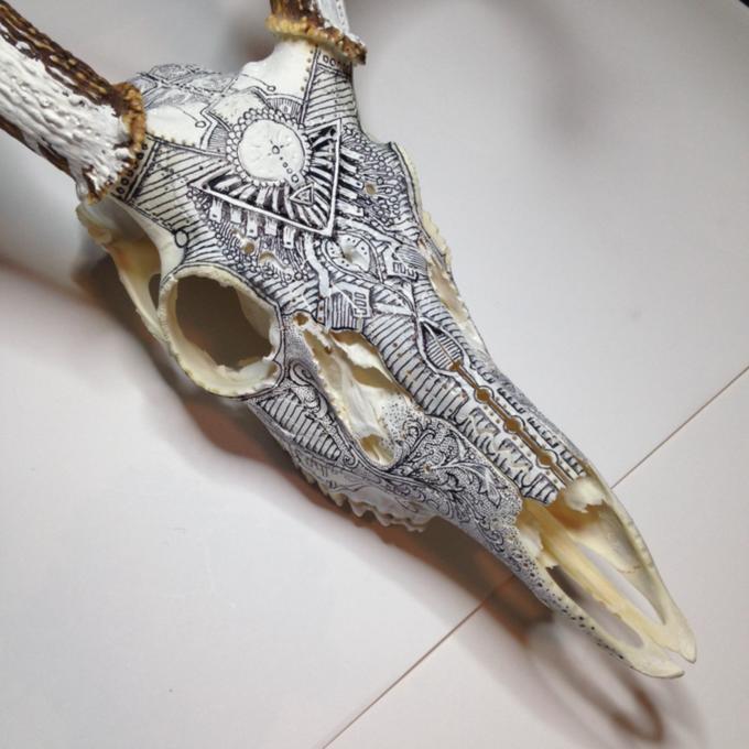 Питер Дроус: Пирография на черепах диких зверей. Изображение № 11.