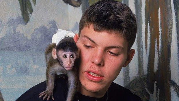 10 обезьян, ставших медийными персонами. Изображение № 5.