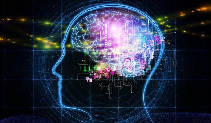 Учёные успешно передали мысли от человека к человеку через интернет. Изображение № 1.