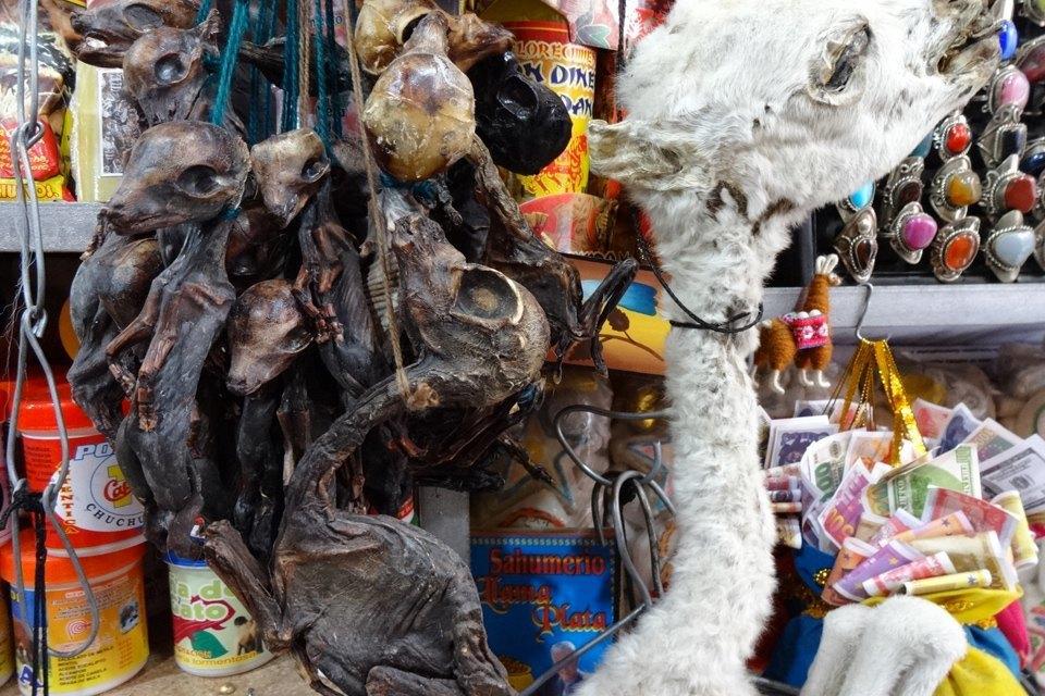 Обыкновенная магия: Четыре главных колдовских рынка мира. Изображение № 5.
