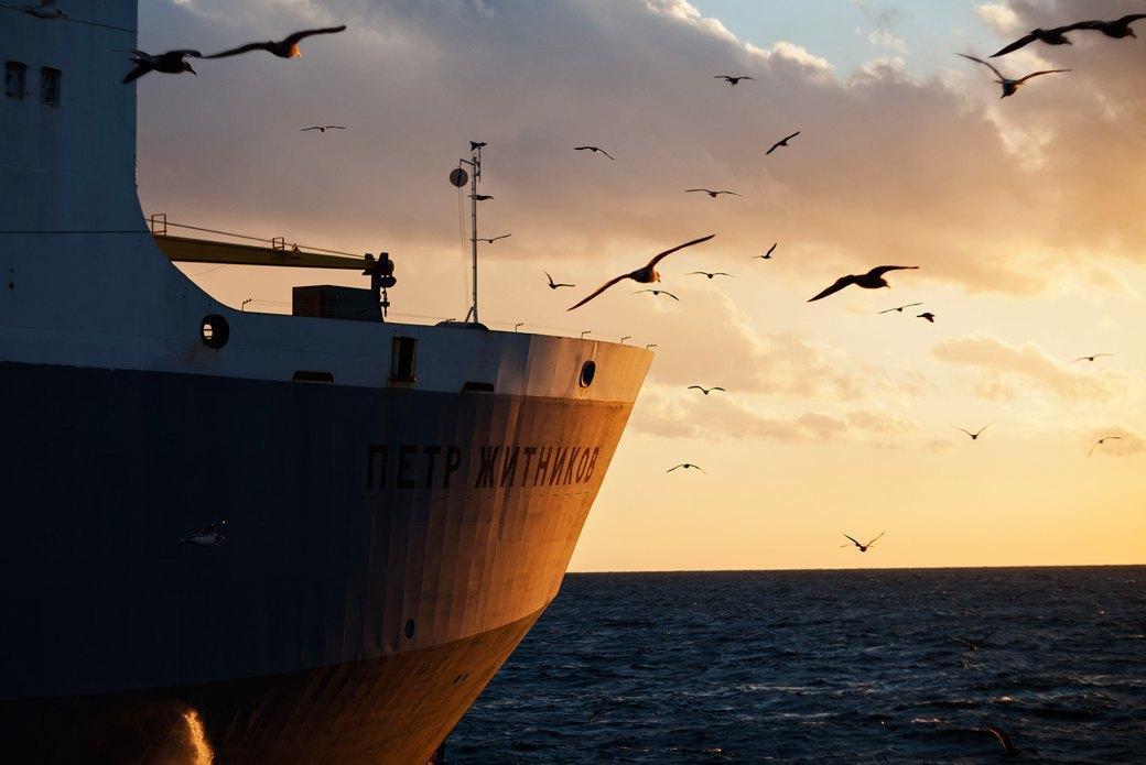 Как я бросил всё ради работы на морском судне. Изображение № 42.