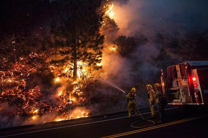 Наркоман спалил 1500 гектаров леса в Калифорнии. Изображение № 1.
