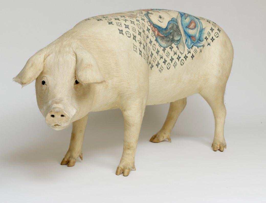 Всё о татуировках на свиньях. Изображение № 5.
