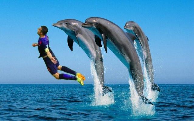 Летучий голландец: Робин ван Перси как новый интернет-мем. Изображение № 2.