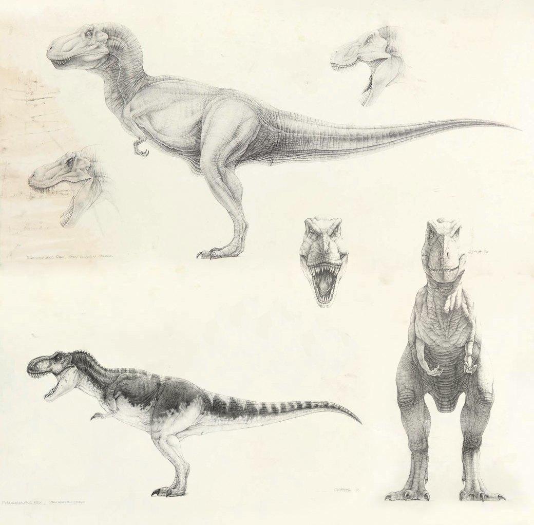 Как создавали тираннозавра для «Парка Юрского периода». Изображение № 3.