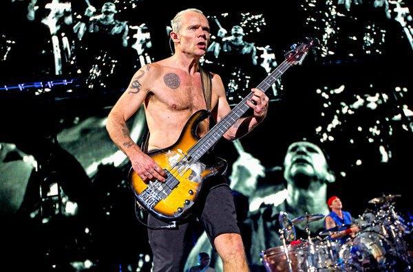 Басист Red Hot Chili Peppers Фли решил написать автобиографию. Изображение № 1.