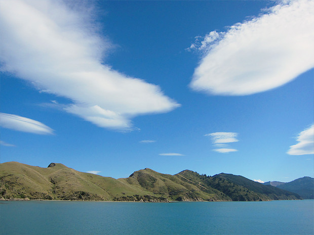 Прыгну со скалы: Как я объехал Новую Зеландию, чтобы совершить прыжок с тарзанкой с высоты 134 метра. Изображение №28.