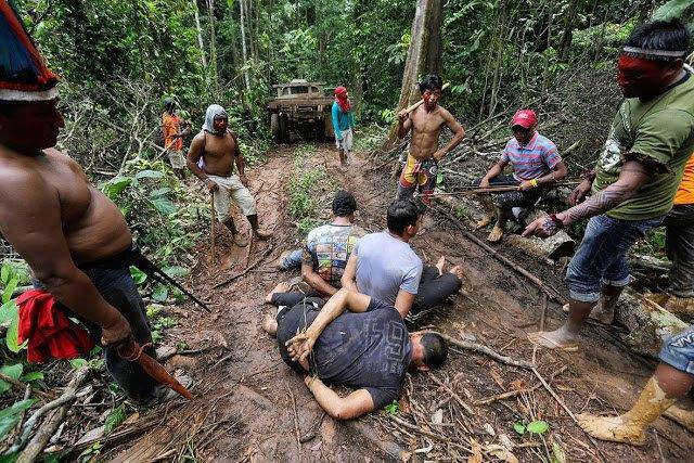 Индейцы Амазонии открыли охоту на браконьеров. Изображение № 8.